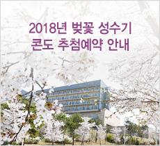 2018년 벚꽃 성수기 콘도 추첨예약 안내 이벤트이미지