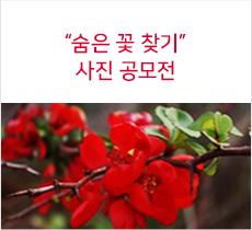 숨은 꽃 찾기 사진 공모전
